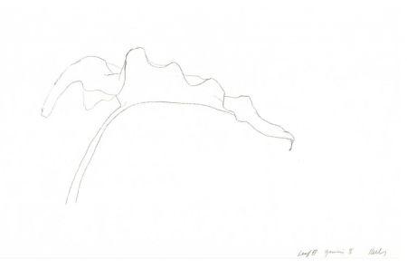 Lithographie Kelly - Leaf Iv