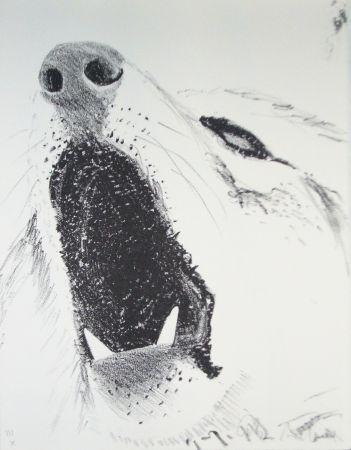 Livre Illustré Aillaud - L'Encyclopédie de tous les animaux - Tome III