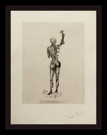 Gravure Dali - Les Chants de Maldoror (Figure)