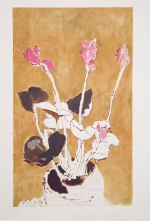 Lithographie Picasso - Les Cyclamens, 22-E