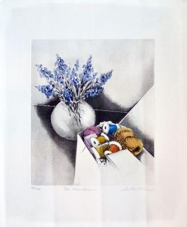 Gravure Antonini - Les Muscoris