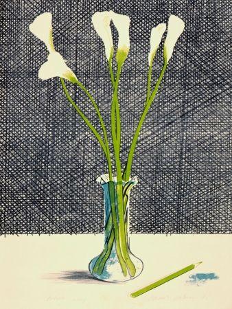 Lithographie Hockney - Lillies (Still Life)