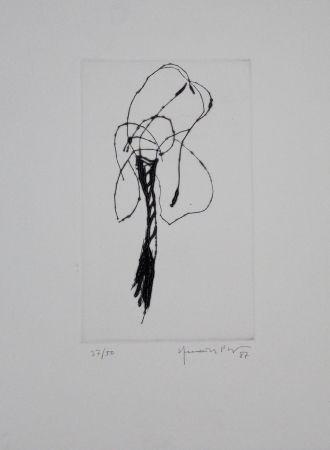 Pointe-Sèche Hernandez Pijuan - Lliri / Lily