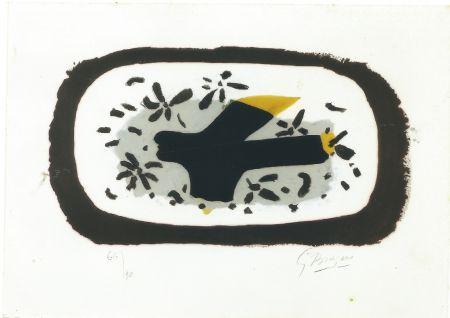 Aucune Technique Braque - L'Oiseau d'Octobre