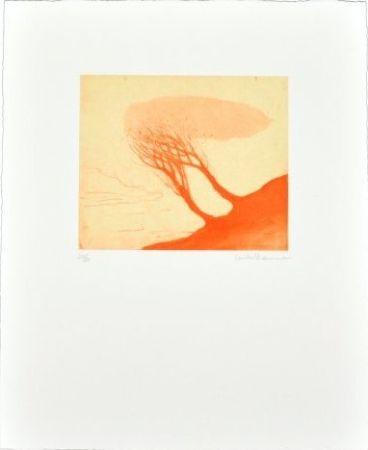 Multiple Ikemura - Los árboles rojos