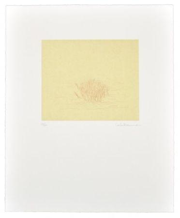 Gravure Ikemura  - Los árboles rojos de lejo