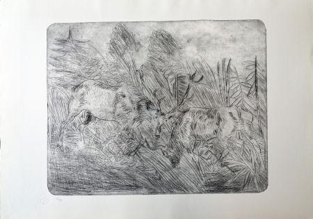 Pointe-Sèche Ligabue - Lotta fra cervi