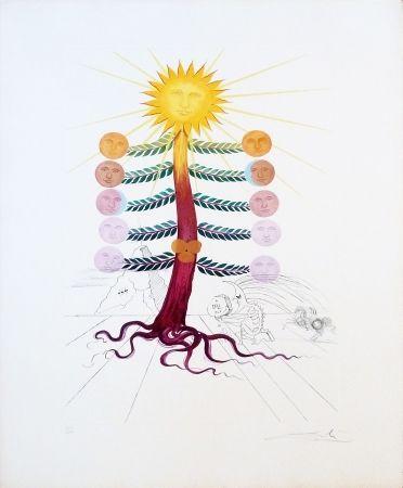 Gravure Dali - Lune (Water-lily)