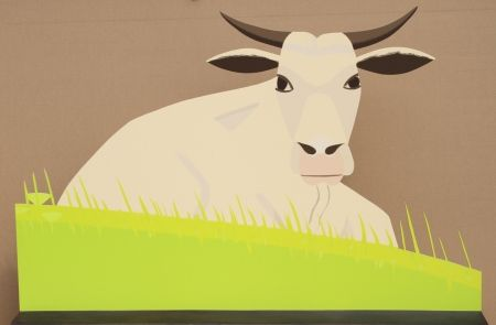 Multiple Katz - Maine Cow