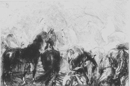 Eau-Forte Besnard - Marché aux chevaux a Mainson Carré - Algérie