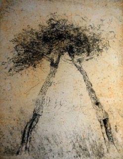 Eau-Forte Et Aquatinte Music - Motif végétal