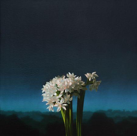 Aucune Technique Cohen - Narcissus Against Evening Sky