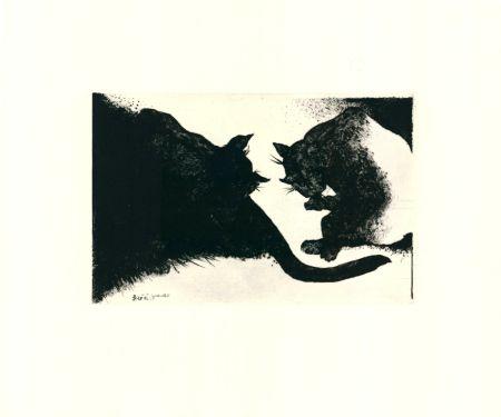 Pointe-Sèche Rose - Nightcats