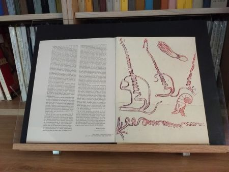 Livre Illustré Ernst - No 24