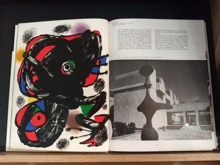 Livre Illustré Miró - No 46