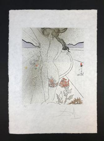 Multiple Dali - Nu à la jarretiére ( Nude with Garter )
