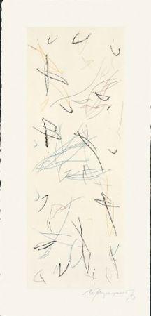 Gravure Ràfols Casamada - Ocells-Variant 1-2