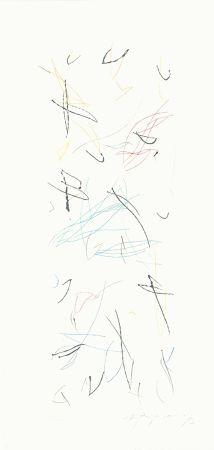Gravure Ràfols Casamada - Ocells variant 1-2
