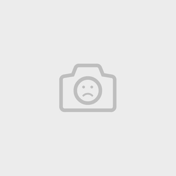 Lithographie Braque -  Oiseau Bistre