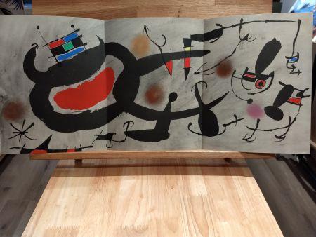 Livre Illustré Miró - Oiseau solaire