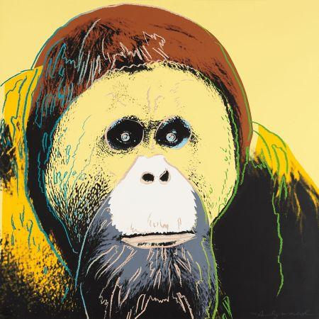 Sérigraphie Warhol - Orangutan (FS II.299)