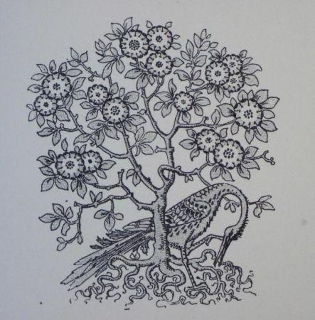 Gravure Sur Bois Grasset - Ornements typographiques
