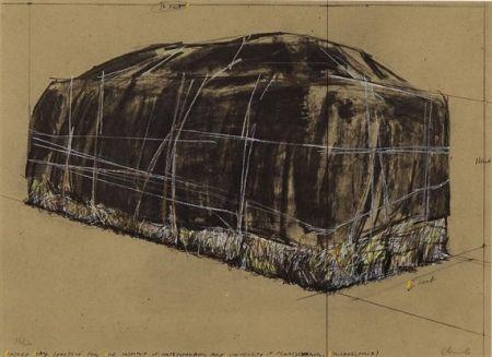 Sérigraphie Christo -  PACKED HAY