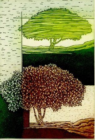 Livre Illustré Rossello - Paesaggio