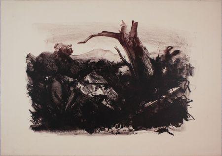 Lithographie Annigoni - Paesaggio annigoniano
