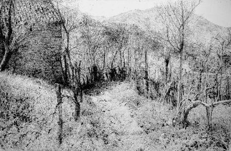 Eau-Forte Barbisan - Paesaggio in collina