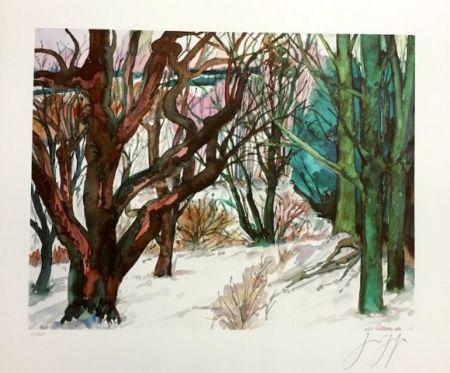 Lithographie Grass - Paisaje Invernal