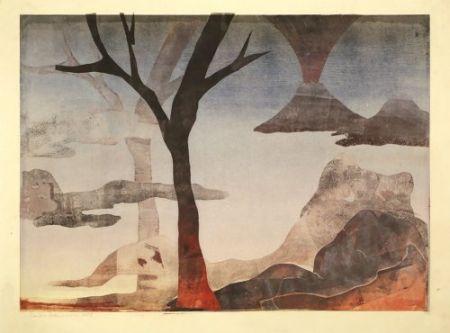 Monotype Ikemura  - Paisajes con el monte Fuji 18