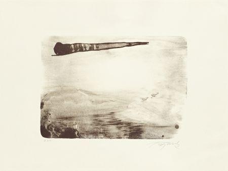 Lithographie Fontela - Palm