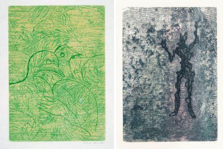 Eau-Forte Et Aquatinte Ernst - PAROLES PEINTES (1959) 2 GRAVURES ORIGINALES DE MAX ERNST (10 gravures originales de Max Ernst, Jacques Hérold, Wifredo Lam, Sébastian Matta et DorotheaTanning. Poèmes d'Alain Bosquet).