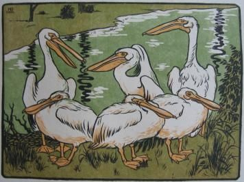 Gravure Sur Bois Berthold - Pelikane