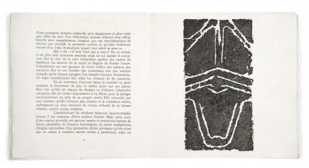Livre Illustré Ubac - Pierres réfléchies