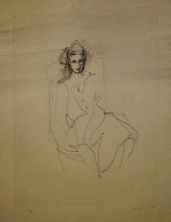 Pointe-Sèche Villon - Portrait