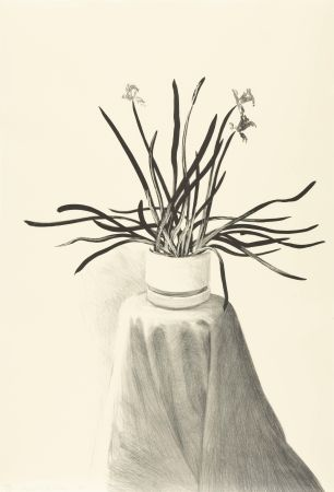 Lithographie Hockney - Potted Daffodils