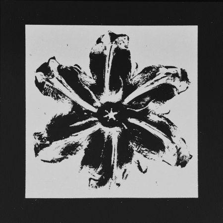 Sérigraphie Robierb - Power Flower (Black)
