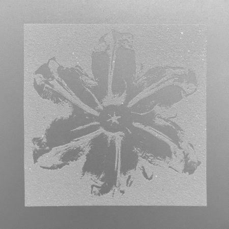 Sérigraphie Robierb - Power Flower (Silver)