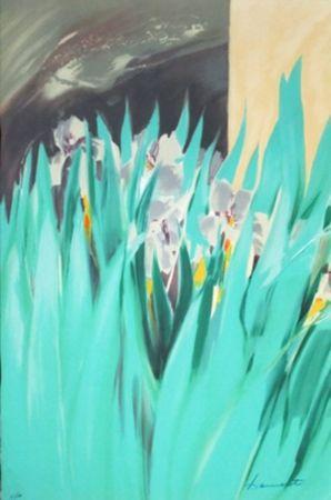 Lithographie Hemeret  - Provence aux iris