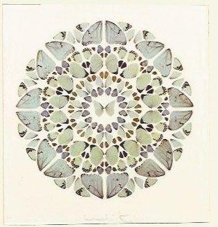Sérigraphie Hirst - Psalm Print, Exaudi, Domine (Diamond dust)