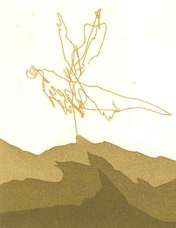 Livre Illustré Perilli - PTYX