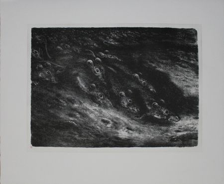 Lithographie Weber - Rattenzug