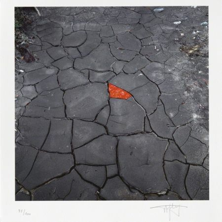 Offset Goldsworthy - Red leaves on cracked earth