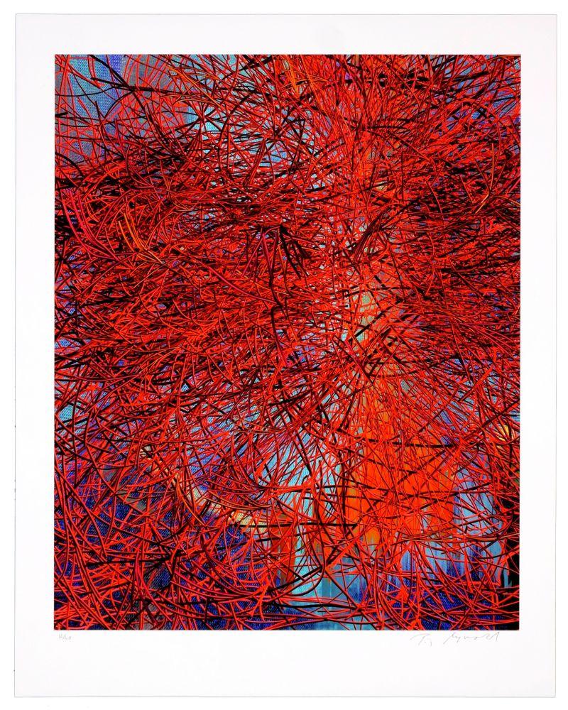 Estampe Numérique Myrvold - Red Wires in Sunset