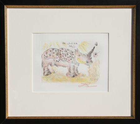 Gravure Dali - Rhinoceros