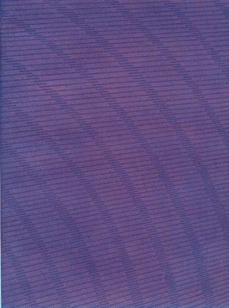 Livre Illustré Napoleone - Rimanenze