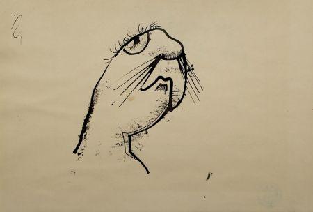 Aucune Technique Hofer - Robbe (Seal)