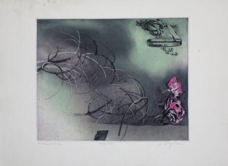 Eau-Forte Et Aquatinte Bergmann - Rosa Rose